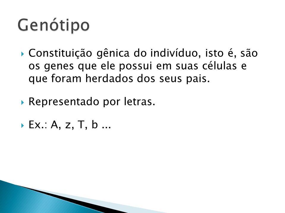  Constituição gênica do indivíduo, isto é, são os genes que ele possui em suas células e que foram herdados dos seus pais.