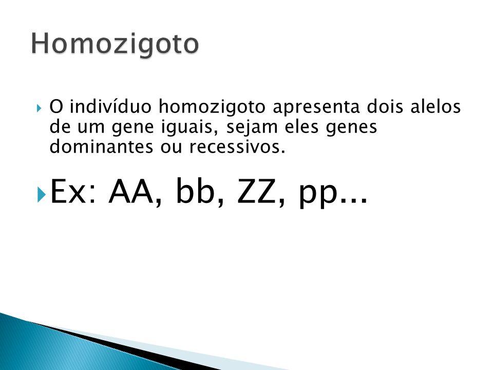  O indivíduo homozigoto apresenta dois alelos de um gene iguais, sejam eles genes dominantes ou recessivos.