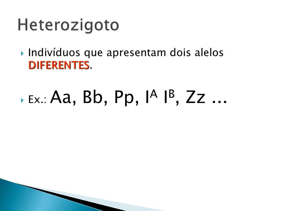 DIFERENTES  Indivíduos que apresentam dois alelos DIFERENTES.  Ex.: Aa, Bb, Pp, I A I B, Zz...