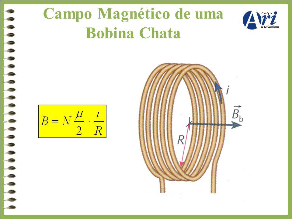 Campo Magnético de uma Bobina Chata.