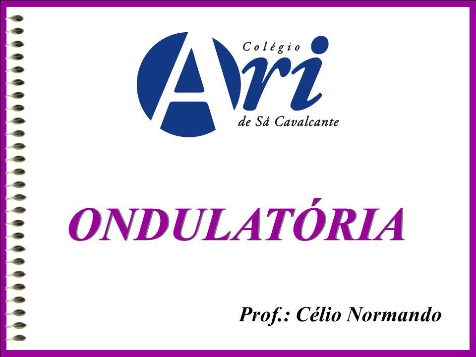 Prof.: Célio Normando ONDULATÓRIA