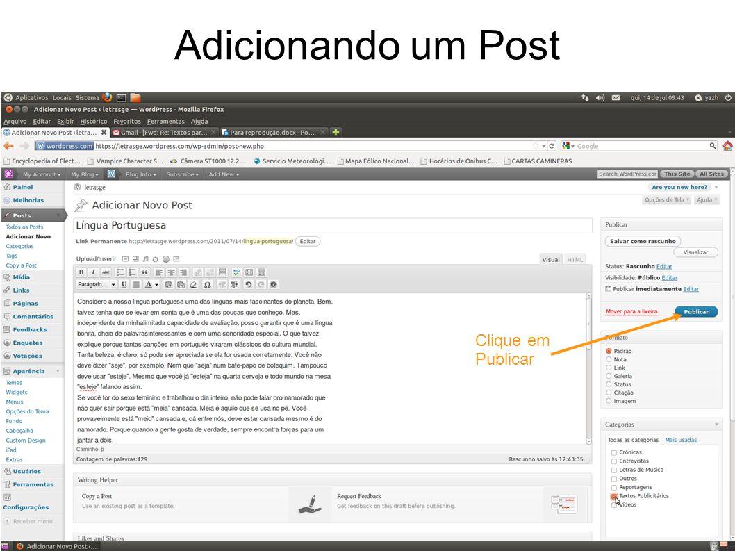 Adicionando um Post Clique em Publicar
