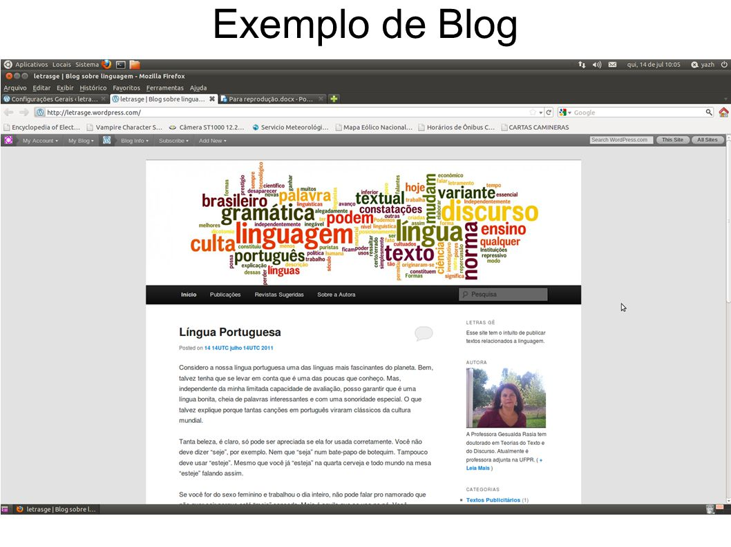 URL PÁGINAS Coluna Central: Posts Coluna Lateral: Informações e Menus