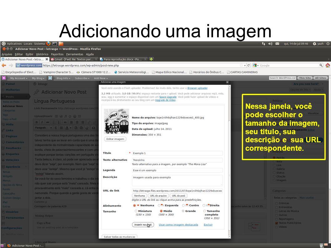 Adicionando uma imagem Nessa janela, você pode escolher o tamanho da imagem, seu titulo, sua descrição e sua URL correspondente.