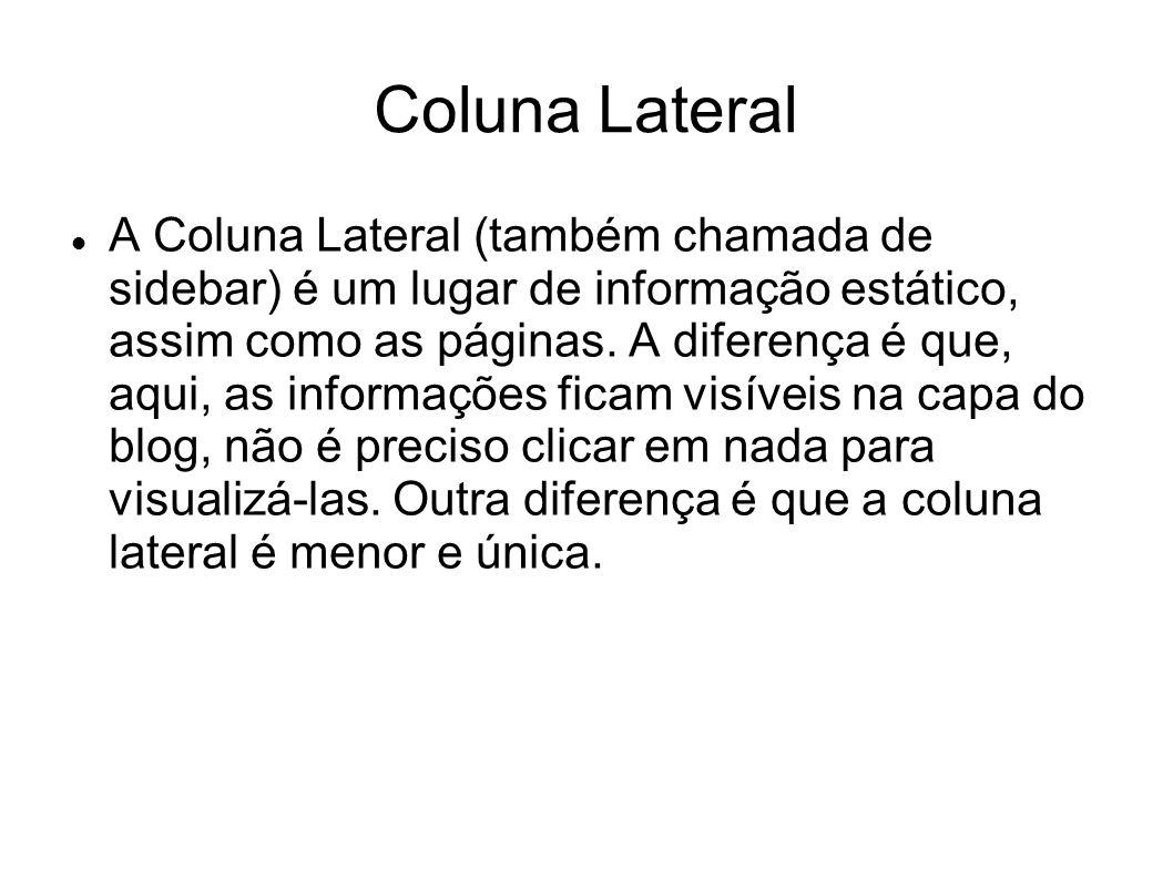  A Coluna Lateral (também chamada de sidebar) é um lugar de informação estático, assim como as páginas.