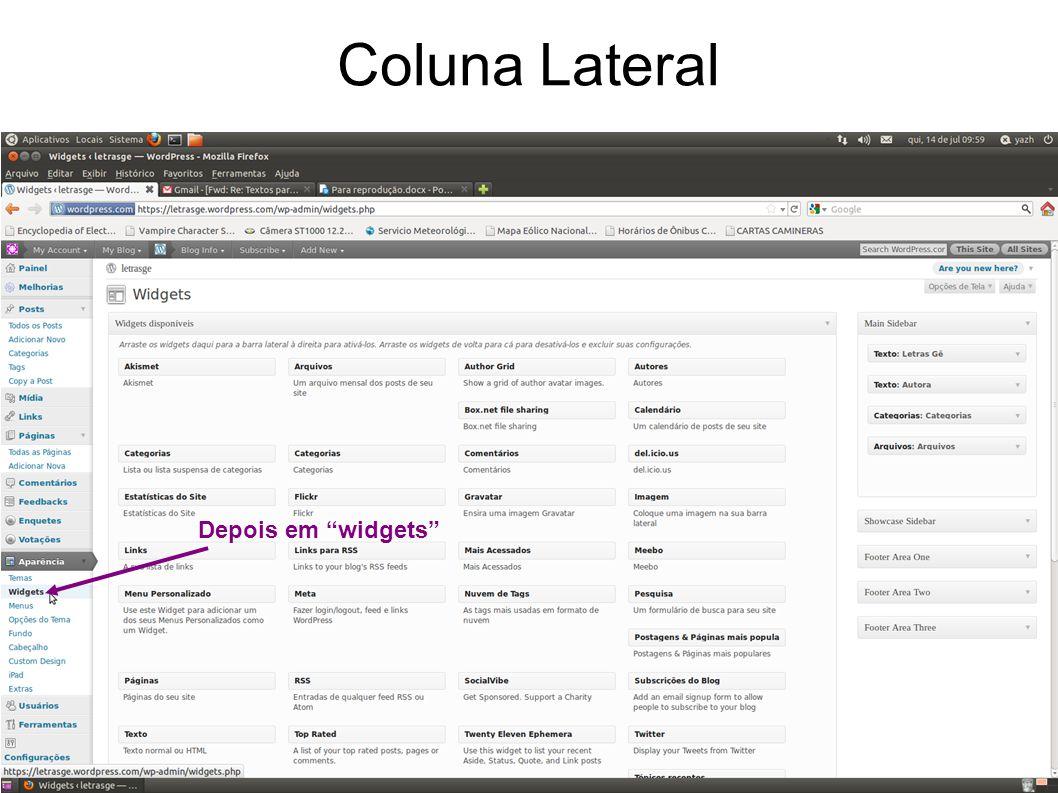 Coluna Lateral Depois em widgets