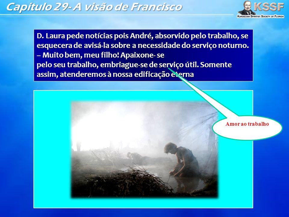Capítulo 29- A visão de Francisco D. Laura pede notícias pois André, absorvido pelo trabalho, se esquecera de avisá-la sobre a necessidade do serviço