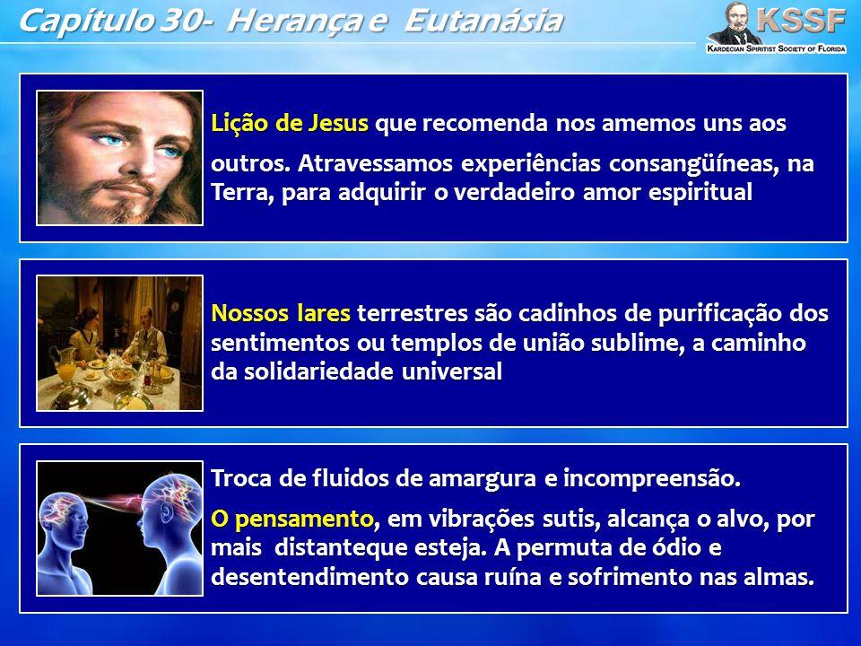 Capítulo 30- Herança e Eutanásia Lição de Jesus que recomenda nos amemos uns aos outros. Atravessamos experiências consangüíneas, na Terra, para adqui