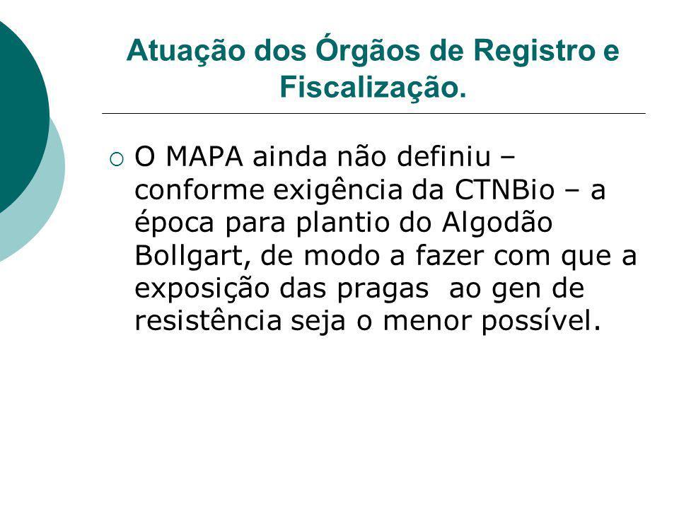 Atuação dos Órgãos de Registro e Fiscalização.  O MAPA ainda não definiu – conforme exigência da CTNBio – a época para plantio do Algodão Bollgart, d