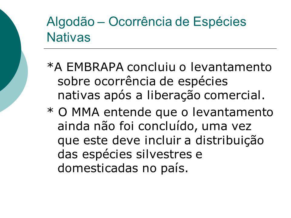 Algodão – Ocorrência de Espécies Nativas *A EMBRAPA concluiu o levantamento sobre ocorrência de espécies nativas após a liberação comercial. * O MMA e