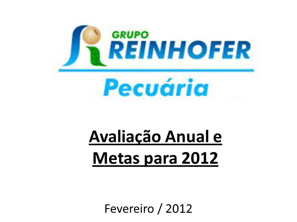 Avaliação Anual e Metas para 2012 Fevereiro / 2012