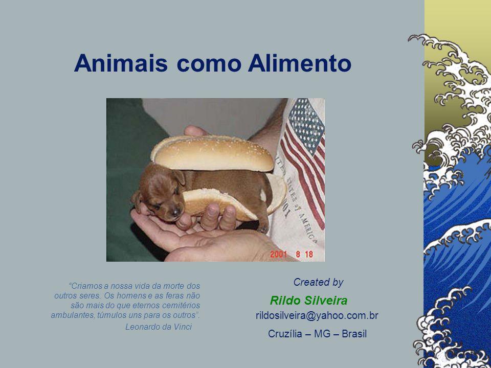 Animais como Alimento Rildo Silveira Created by rildosilveira@yahoo.com.br Cruzília – MG – Brasil Leonardo da Vinci Criamos a nossa vida da morte dos outros seres.