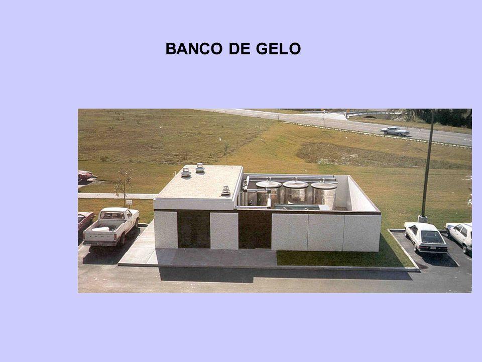 CARACTERÍSTICAS : EDIFÍCIO EM ESTUDO NS L O  Edifício de 20 andares  Pé direito de 2,5 m  Maiores fachadas no sentido leste-oeste  Altura do plenum 0,5 m  66% das fachadas externas de vidro  Garagem não condicionada (no subsolo)  1,5 trocas por hora (renovações)  6 m 2 / pessoa  Iluminação 40 W/m 2  BS = 24 o C UR = 50 %