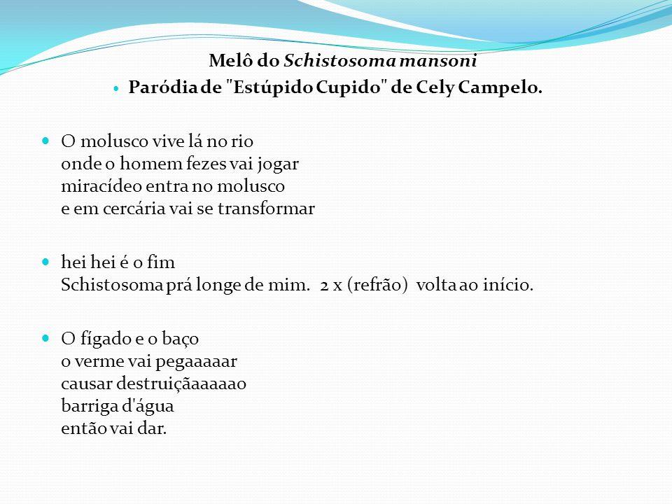 Melô do Schistosoma mansoni  Paródia de