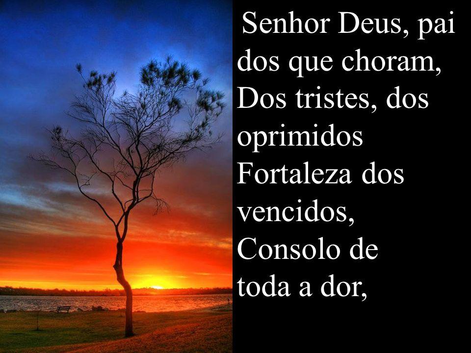 Senhor Deus, pai dos que choram, Dos tristes, dos oprimidos Fortaleza dos vencidos, Consolo de toda a dor,