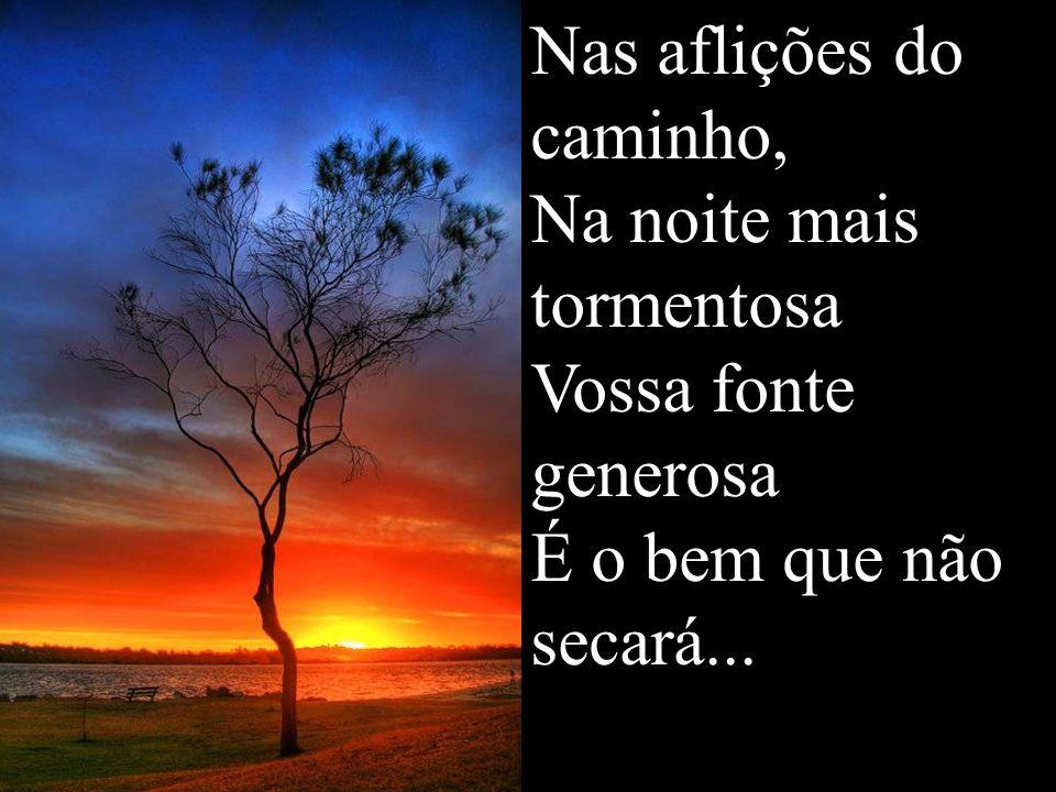 Nas aflições do caminho, Na noite mais tormentosa Vossa fonte generosa É o bem que não secará...