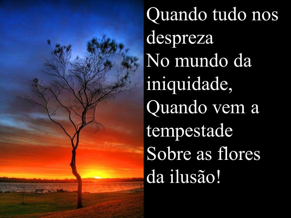 Quando tudo nos despreza No mundo da iniquidade, Quando vem a tempestade Sobre as flores da ilusão!