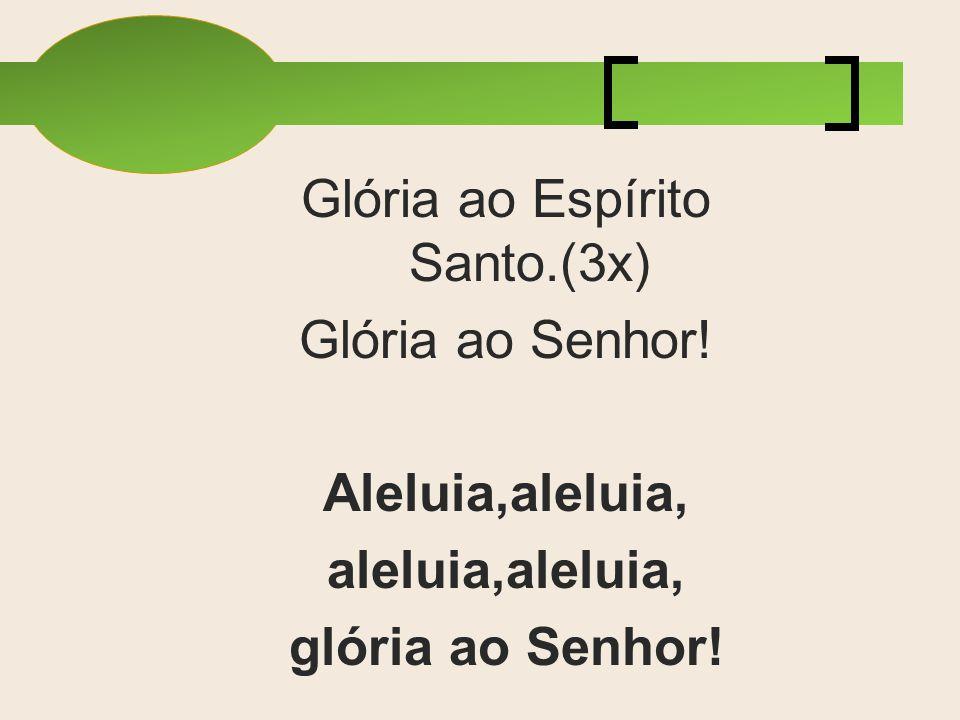 Glória ao Espírito Santo.(3x) Glória ao Senhor! Aleluia,aleluia, aleluia,aleluia, glória ao Senhor!