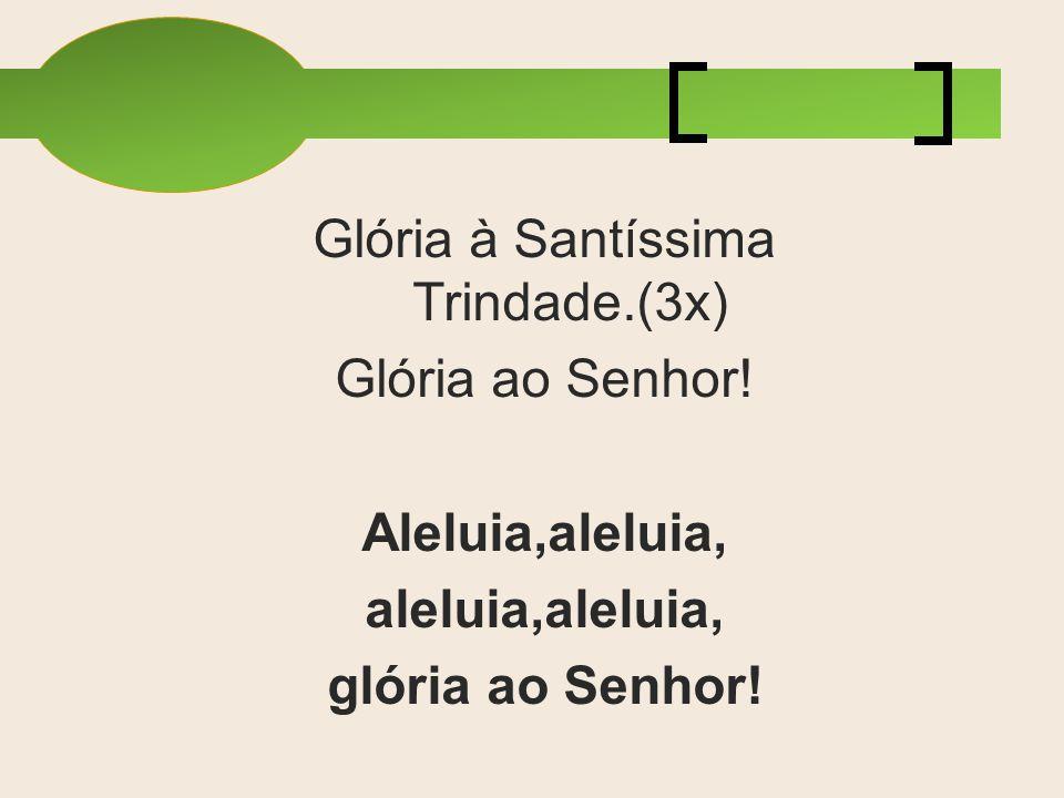 Glória à Santíssima Trindade.(3x) Glória ao Senhor! Aleluia,aleluia, aleluia,aleluia, glória ao Senhor!