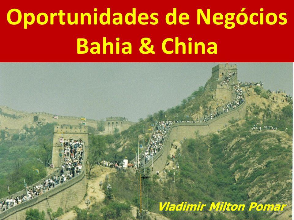 Oportunidades de Negócios Bahia & China Vladimir Milton Pomar