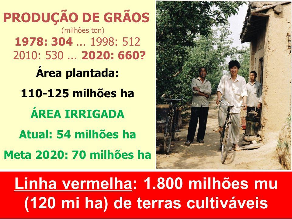 Linha vermelha: 1.800 milhões mu (120 mi ha) de terras cultiváveis PRODUÇÃO DE GRÃOS (milhões ton) 1978: 304... 1998: 512 2010: 530... 2020: 660? Área