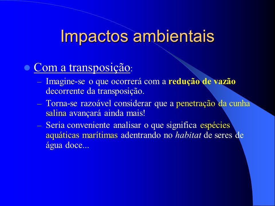 Impactos ambientais  Com a transposição : – Imagine-se o que ocorrerá com a redução de vazão decorrente da transposição. – Torna-se razoável consider