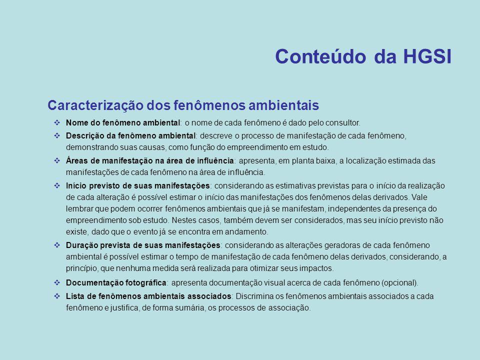 Conteúdo da HGSI •Caracterização dos fenômenos ambientais  Nome do fenômeno ambiental: o nome de cada fenômeno é dado pelo consultor.  Descrição da