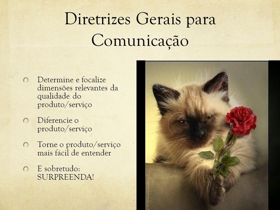 Diretrizes Gerais para Comunicação Desenvolva uma rede de comunicação compatível com os objetivos e a verba Prometa só o que é possível Torne tangível