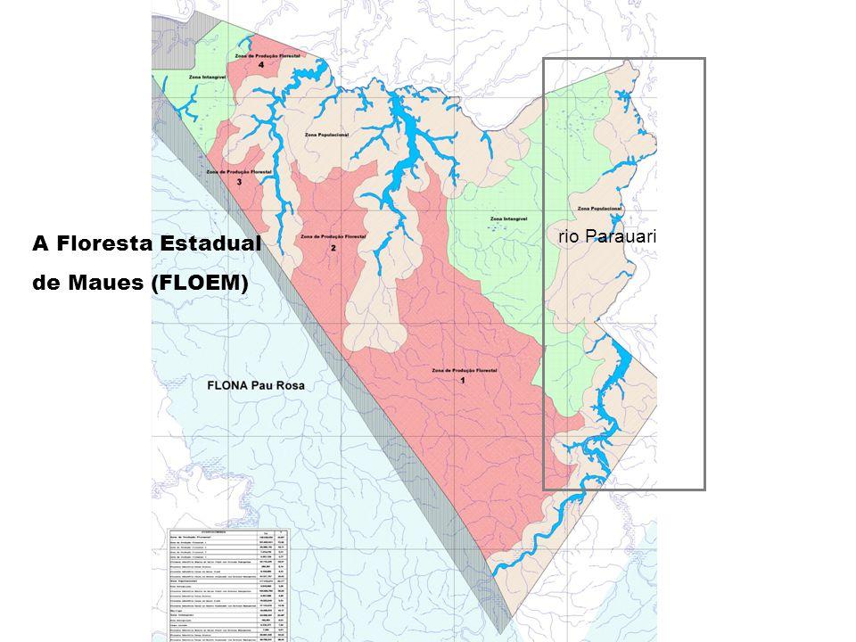 A área populacional do rio Parauari