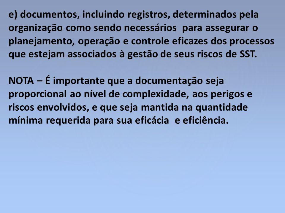 e) documentos, incluindo registros, determinados pela organização como sendo necessários para assegurar o planejamento, operação e controle eficazes d