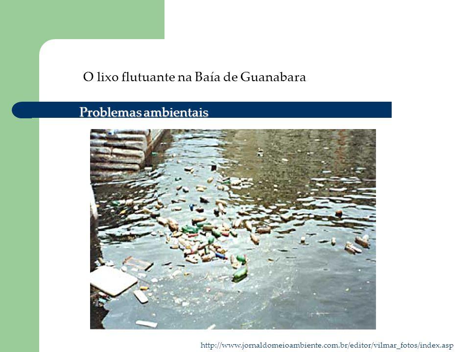 O lixo flutuante na Baía de Guanabara http://www.jornaldomeioambiente.com.br/editor/vilmar_fotos/index.asp Problemas ambientais
