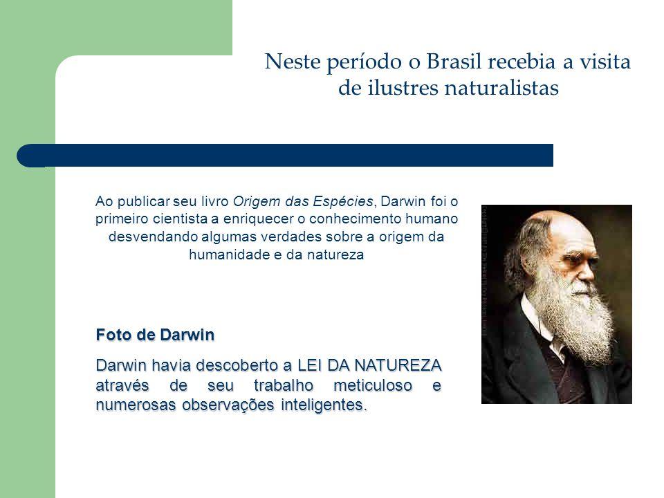 Foto de Darwin Darwin havia descoberto a LEI DA NATUREZA através de seu trabalho meticuloso e numerosas observações inteligentes. Ao publicar seu livr