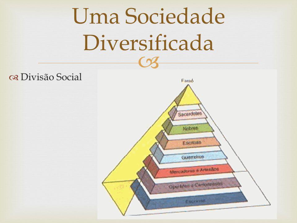   Divisão Social Uma Sociedade Diversificada