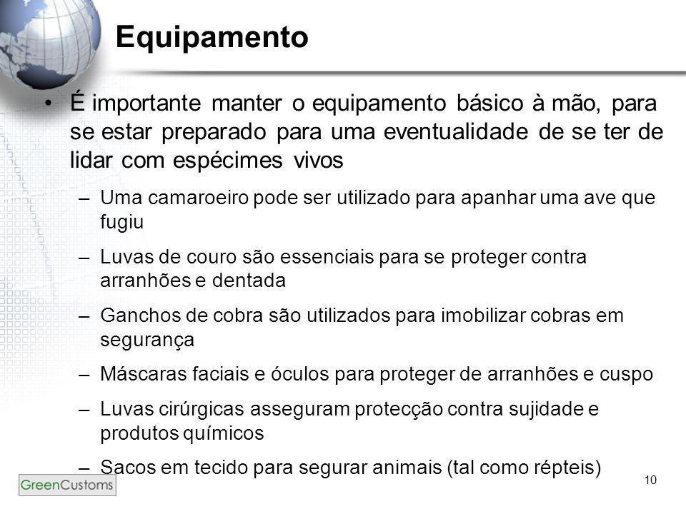 10 Equipamento •É importante manter o equipamento básico à mão, para se estar preparado para uma eventualidade de se ter de lidar com espécimes vivos