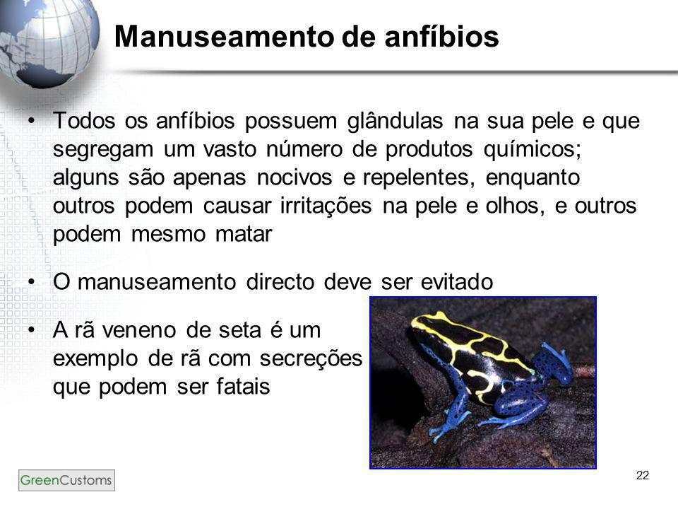 22 Manuseamento de anfíbios •Todos os anfíbios possuem glândulas na sua pele e que segregam um vasto número de produtos químicos; alguns são apenas no