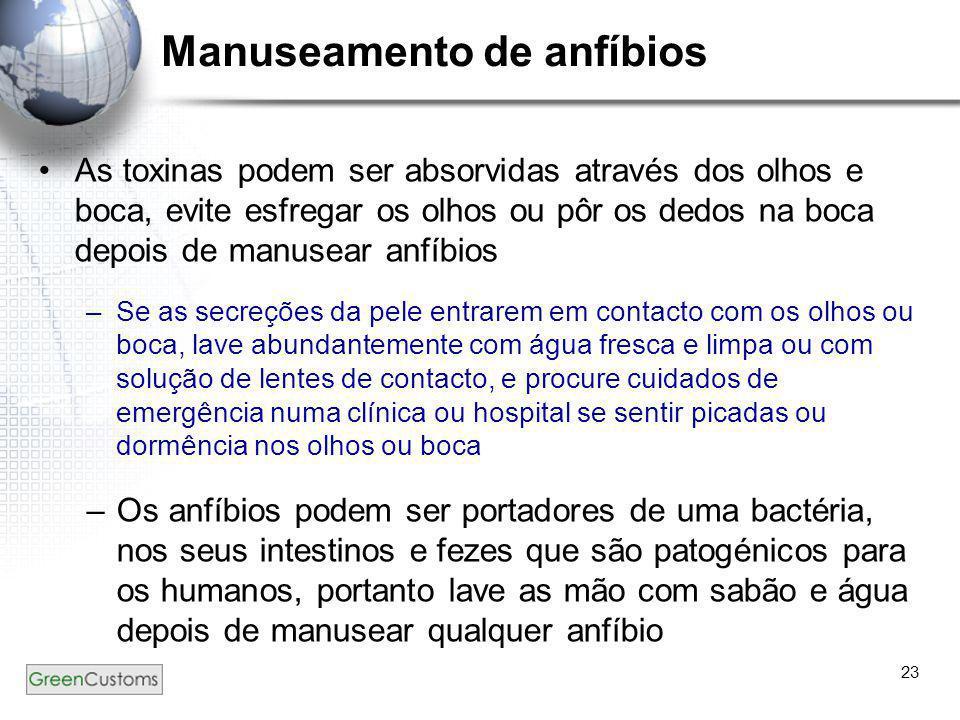 23 Manuseamento de anfíbios •As toxinas podem ser absorvidas através dos olhos e boca, evite esfregar os olhos ou pôr os dedos na boca depois de manus