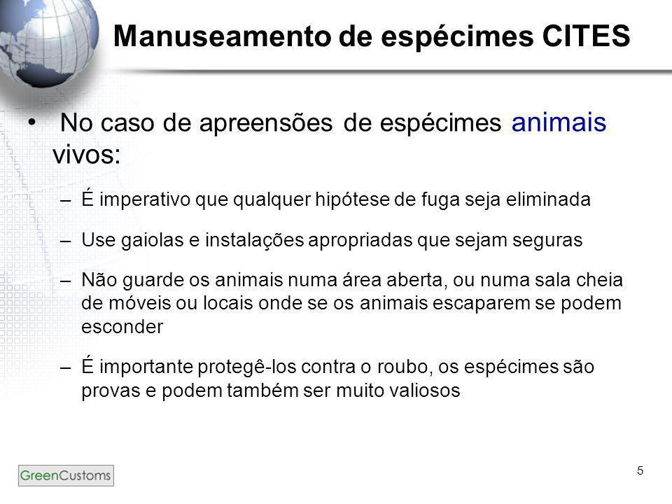 5 Manuseamento de espécimes CITES • No caso de apreensões de espécimes animais vivos: –É imperativo que qualquer hipótese de fuga seja eliminada –Use