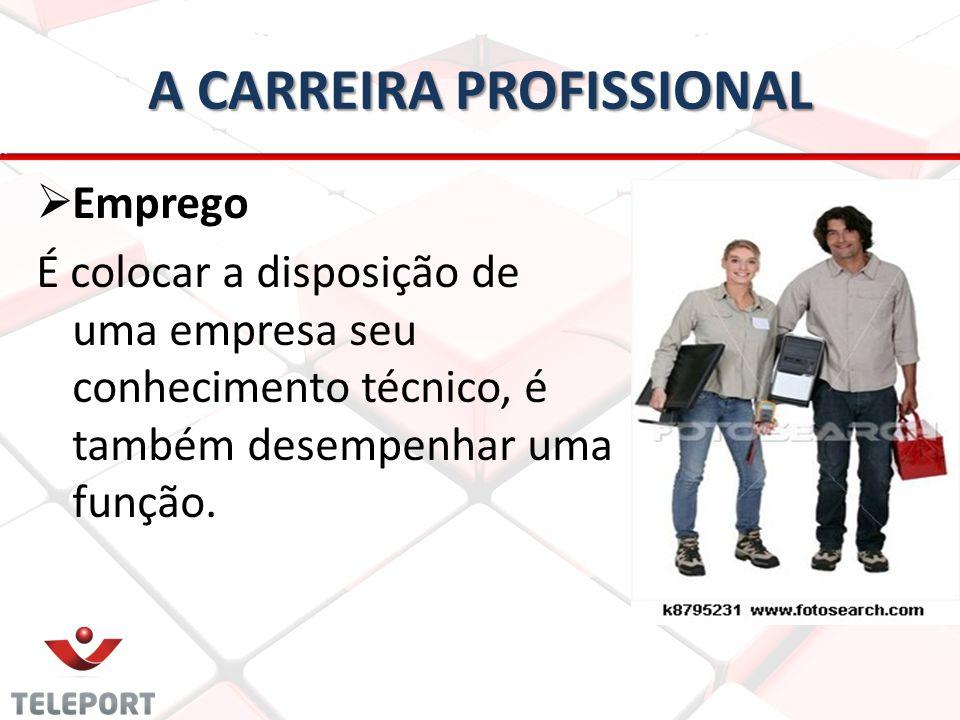 A CARREIRA PROFISSIONAL   Emprego É colocar a disposição de uma empresa seu conhecimento técnico, é também desempenhar uma função.