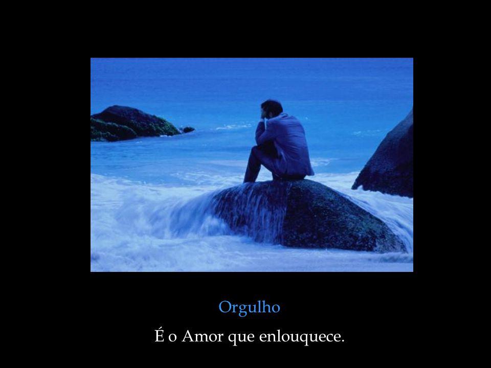 Ciúme É o Amor que se desvaira.