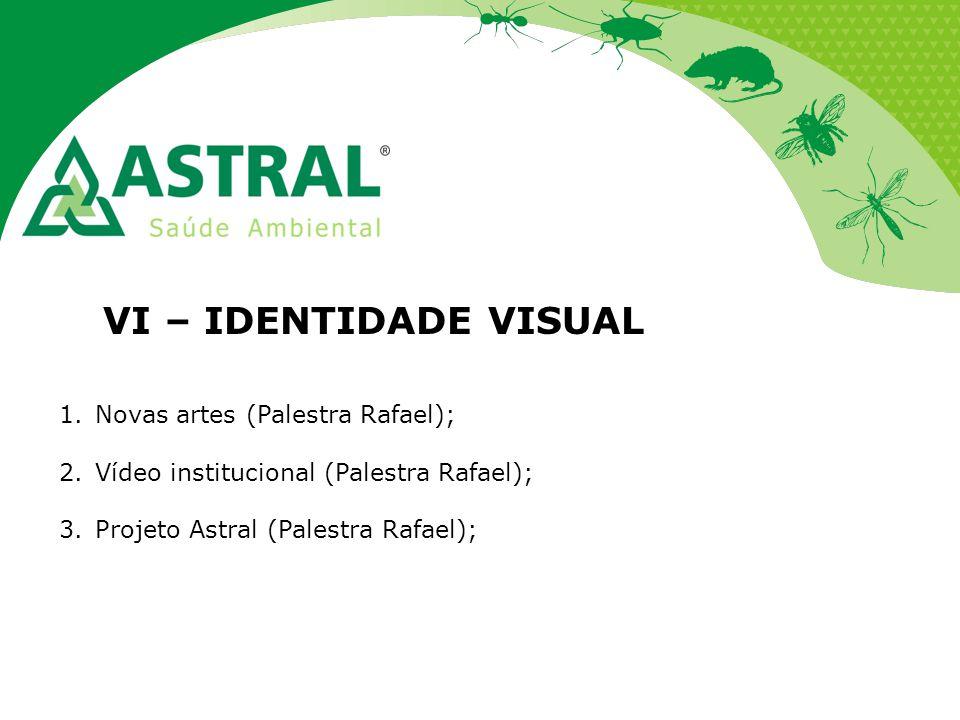 VI – IDENTIDADE VISUAL 1.Novas artes (Palestra Rafael); 2.Vídeo institucional (Palestra Rafael); 3.Projeto Astral (Palestra Rafael);