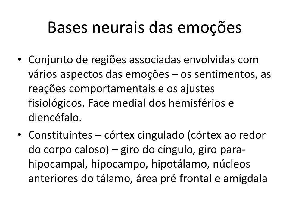 Bases neurais das emoções • Conjunto de regiões associadas envolvidas com vários aspectos das emoções – os sentimentos, as reações comportamentais e o