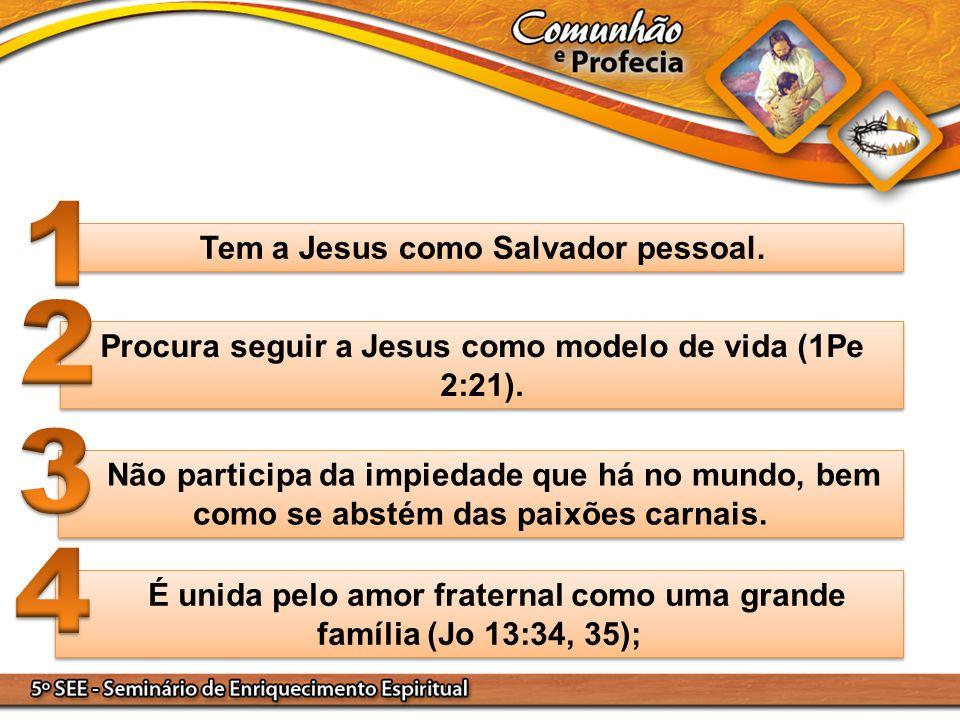 Tem a Jesus como Salvador pessoal. Procura seguir a Jesus como modelo de vida (1Pe 2:21). Não participa da impiedade que há no mundo, bem como se abst