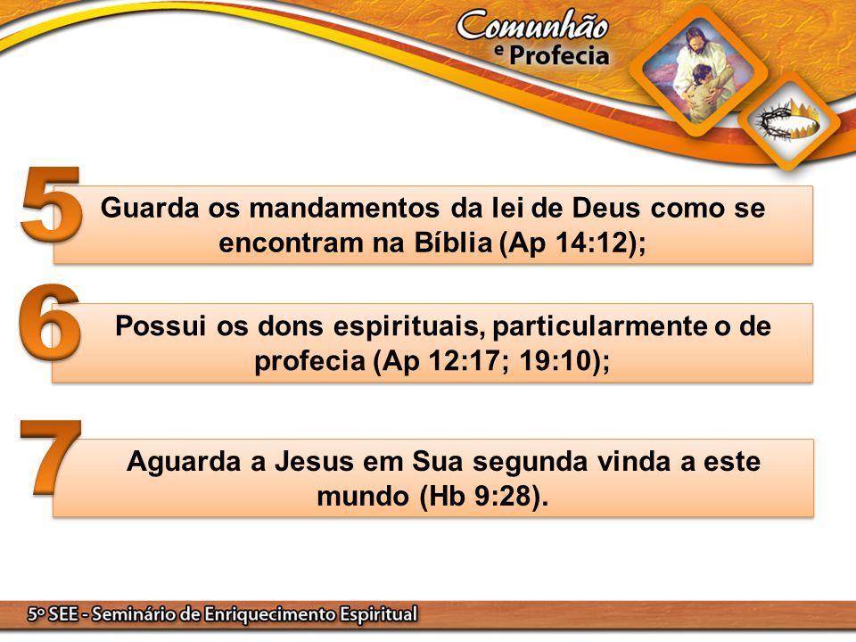 Guarda os mandamentos da lei de Deus como se encontram na Bíblia (Ap 14:12); Possui os dons espirituais, particularmente o de profecia (Ap 12:17; 19:1