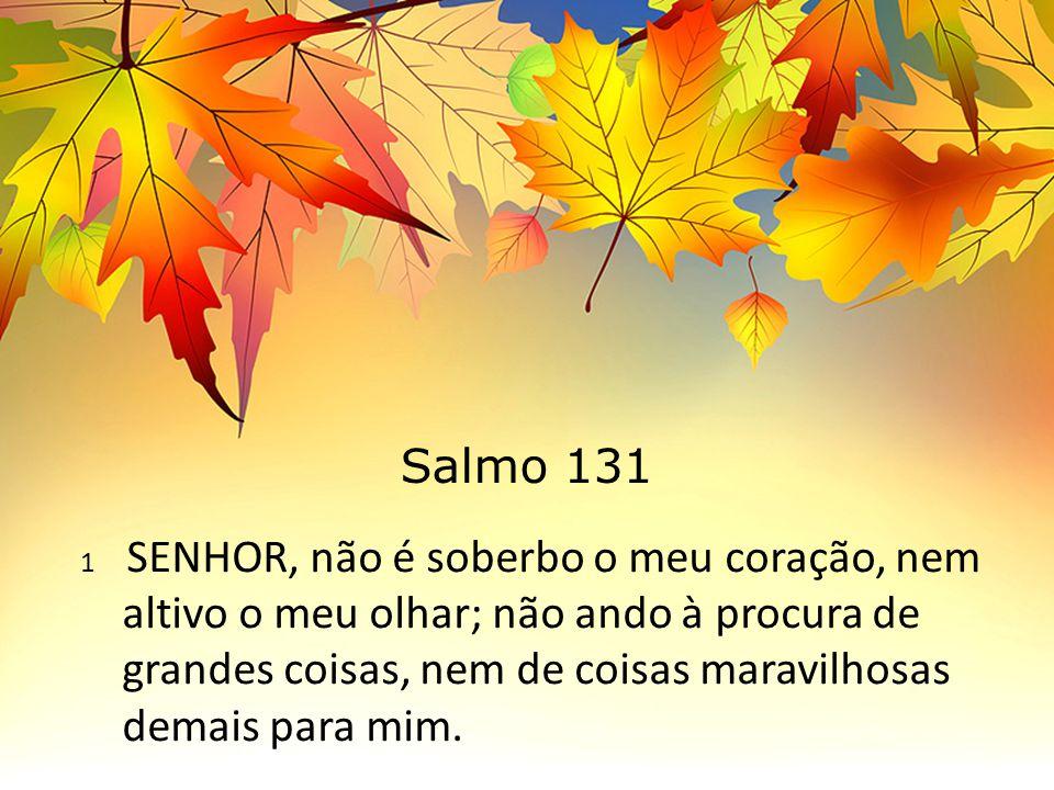Salmo 131 1 SENHOR, não é soberbo o meu coração, nem altivo o meu olhar; não ando à procura de grandes coisas, nem de coisas maravilhosas demais para mim.