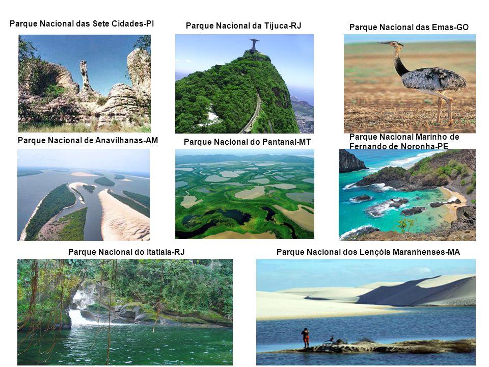 Parque Nacional das Sete Cidades-PI Parque Nacional da Tijuca-RJ Parque Nacional das Emas-GO Parque Nacional de Anavilhanas-AM Parque Nacional do Pant