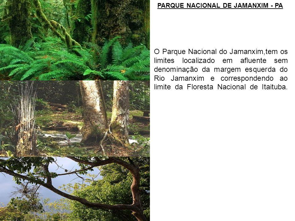 O Parque Nacional do Jamanxim,tem os limites localizado em afluente sem denominação da margem esquerda do Rio Jamanxim e correspondendo ao limite da F