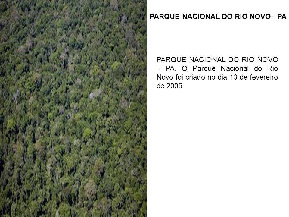 PARQUE NACIONAL DO RIO NOVO - PA PARQUE NACIONAL DO RIO NOVO – PA. O Parque Nacional do Rio Novo foi criado no dia 13 de fevereiro de 2005.