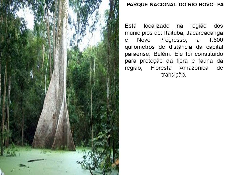 PARQUE NACIONAL DO RIO NOVO- PA Está localizado na região dos municípios de: Itaituba, Jacareacanga e Novo Progresso, a 1.600 quilômetros de distância