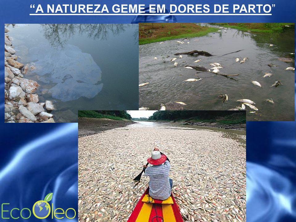 """""""A NATUREZA GEME EM DORES DE PARTO"""""""