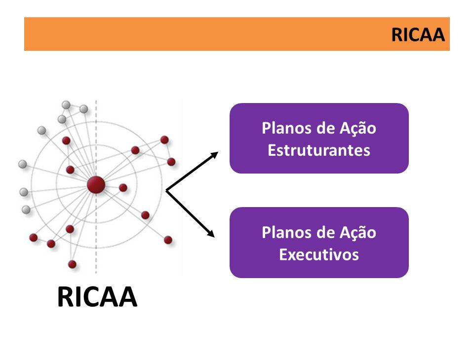 RICAA Planos de Ação Estruturantes Planos de Ação Executivos RICAA